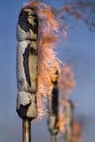 Torches de l'illumination sur des fes Photos libres de droits