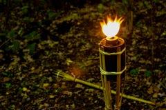 Torches la nuit avec les flammes jaunes et les points culminants photos libres de droits