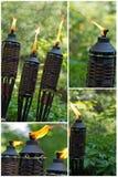 Torcia di bambù della citronella Fotografia Stock