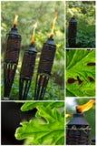 Torcia di bambù della citronella Fotografie Stock