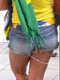 Torcida brasiliano Immagini Stock