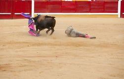 Toreador op zand uit wordt uitgerekt dat Royalty-vrije Stock Foto's