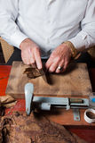 Toreador rolling hand made cigars Stock Image