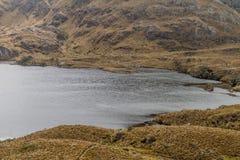 Toreadora lake in National Park Cajas royalty free stock photo