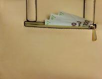 Torebka z pieniądze Zdjęcie Royalty Free