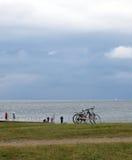 Torekov coastline Stock Photography