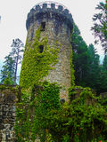 Toren Royalty-vrije Stock Foto