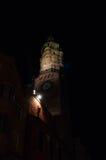 Toren in de duisternis Royalty-vrije Stock Foto