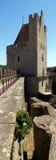 Toren en borstweringen Royalty-vrije Stock Afbeelding