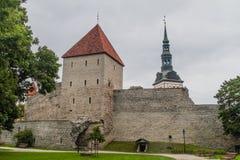 Toren en een deel van de ortificationmuur in Tallinn, Eston stock afbeeldingen