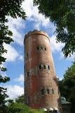 Toren in het bos van Gr Yunque Stock Foto's