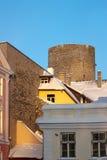 Toren Tallin Royalty-vrije Stock Afbeeldingen