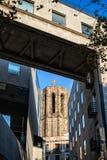 Toren van basiliek van Santa Maria del Pi in Barcelona Royalty-vrije Stock Foto