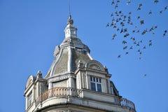 Toren van het hotelgebouw met duiven royalty-vrije stock foto's