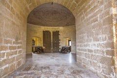 Toren van kanonnen stock afbeeldingen