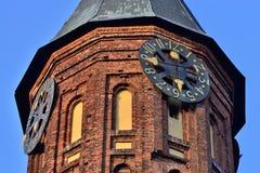 Toren van Koenigsberg-Kathedraal, Gotische tempel van de 14de eeuw Symbool van Kaliningrad, tot 1946 Koenigsberg, Rusland royalty-vrije stock afbeelding
