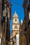Toren van laga ¡ van kathedraalde La Encarnacià ³ n DE Mà Stock Foto
