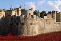 Toren van Londen Royalty-vrije Stock Afbeeldingen