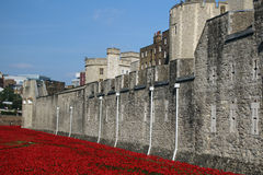 Toren van Londen Stock Foto's