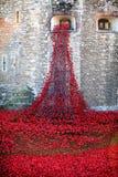 Toren van Londen Ceramische Poppy Display Royalty-vrije Stock Foto's
