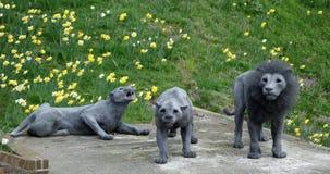 Toren van Londen: Lion Sculptures Stock Fotografie