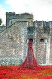 Toren van Londen met overzees van Rode Papavers om de gevallen militairen van WWI - 30 Augustus 2014 te herinneren - Londen, het  Stock Foto's