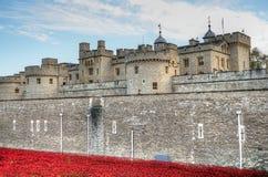 Toren van Londen met overzees van Rode Papavers om de gevallen militairen van WWI - 30 Augustus 2014 te herinneren - Londen, het  Royalty-vrije Stock Foto's
