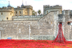 Toren van Londen met overzees van Rode Papavers om de gevallen militairen van WWI - 30 Augustus 2014 te herinneren - Londen, het  Stock Afbeeldingen