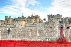 Toren van Londen met overzees van Rode Papavers om de gevallen militairen van WWI - 30 Augustus 2014 te herinneren - Londen, het  Royalty-vrije Stock Foto