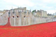 Toren van Londen met Papavers Royalty-vrije Stock Foto's