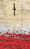 Toren van Londen met Papavers Royalty-vrije Stock Fotografie
