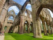 Torenhoge Oude Abbey Stone Ruins Royalty-vrije Stock Foto's