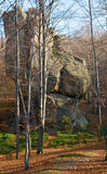 Torenhoge steen in bos Stock Foto