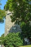 Torens van Oud Tallinn stock afbeelding
