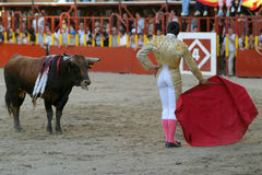 Torero. And bull, one in front of other Stock Images