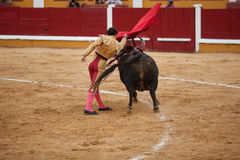 Torero in action. Spanish torero performing a bullring, Badajoz, Spain Royalty Free Stock Photo