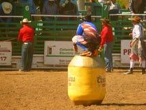 Torero del vaquero Foto de archivo libre de regalías