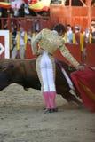 Torero e touro Foto de Stock