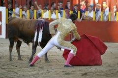 Torero e touro Fotografia de Stock