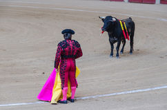 Torero holding cape. Torero holding his cape is waiting for the bull Royalty Free Stock Images