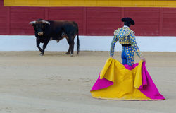 Torero waiting for the bull. A bullfighter awaiting for the bull in the bullring. Corrida de toros Stock Image