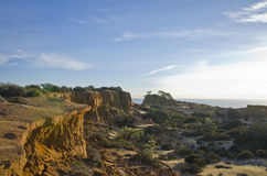 Torey Pines. The coast of Torey Pines just before sunset Stock Images