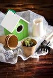 Torfowiskowi garnków, domu, sadzonkowych i ogrodowych narzędzia na drewnianym tle, Fotografia Stock