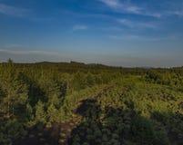 Torfowiskowy bagno blisko Soumarsky Najwięcej wioski zdjęcia royalty free