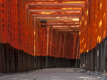 Tori auf Inari-Schrein Lizenzfreie Stockbilder