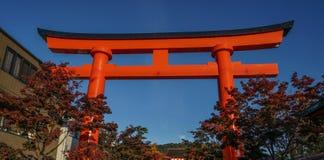 Tori gate with autumn maple leaf royalty free stock photo