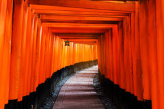 Tori Gate de Fushimi Inari, Kyoto Photo libre de droits