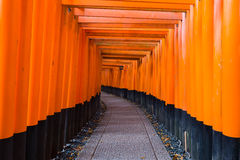 Tori gate at Fushimi-inari temple Royalty Free Stock Photography