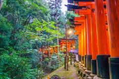 Tori Gate roja en el templo de la capilla de Fushimi Inari en Kyoto, Japón Imagen de archivo