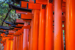 Tori Gate rossa al tempio del santuario di Fushimi Inari a Kyoto, Giappone Immagini Stock